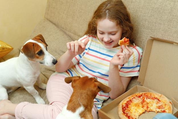Nette jack russel hunde sitzen auf einem sofa und betteln um pizza auf einem kind.