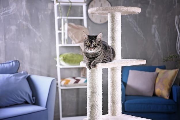 Nette katze, die auf baum im modernen raum sitzt