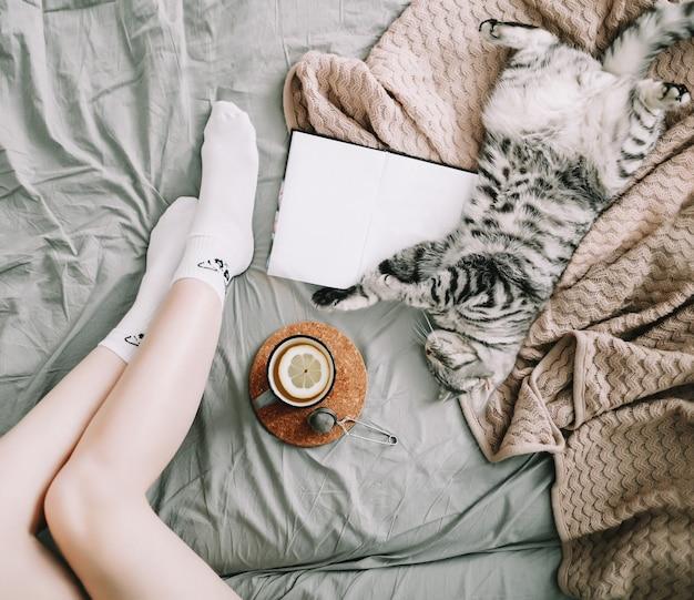 Nette katze, die zu hause schläft. buch und tasse zitronentee mit wohnkultur auf dem warmen, weichen bett.