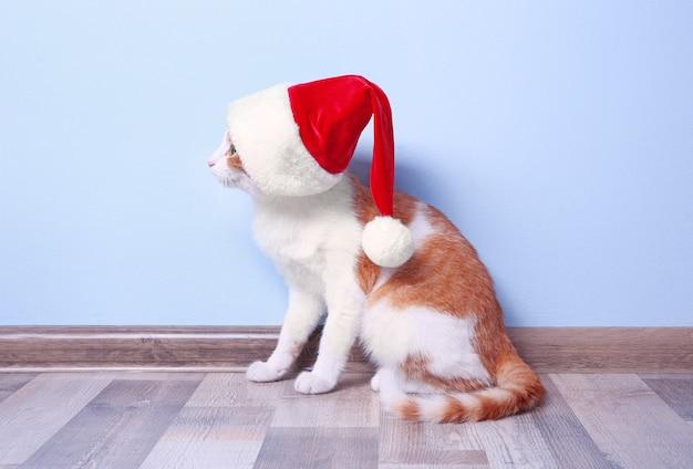 Nette katze in weihnachtsmannmütze auf heller wand