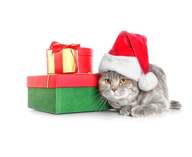 Nette katze in weihnachtsmütze in der nähe von geschenkboxen auf weißer oberfläche