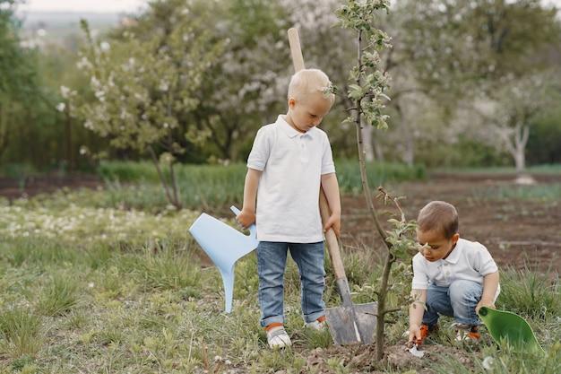Nette kleine jungen, die einen baum auf einem park pflanzen