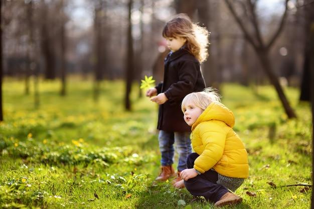 Nette kleine kinder, die zusammen im sonnigen frühlingspark spielen