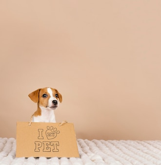 Netter beagle, der fahne trägt