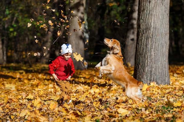 Netter, glücklicher, weißer junge im roten hemd, der mit hund zwischen gelben blättern lächelt und spielt. kleines kind, das spaß im herbstpark hat. konzept der freundschaft zwischen kindern und haustieren, glückliche familie