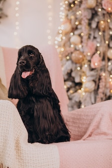 Netter hund sitzt im stuhl am weihnachtsbaum christmas