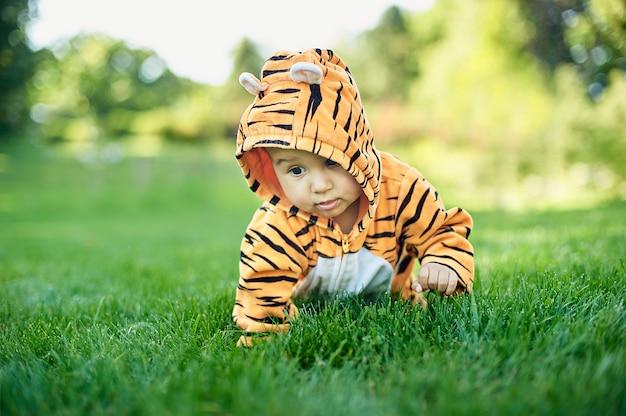 Netter junge, der ein tigerkostüm trägt, das im gras am park sitzt.