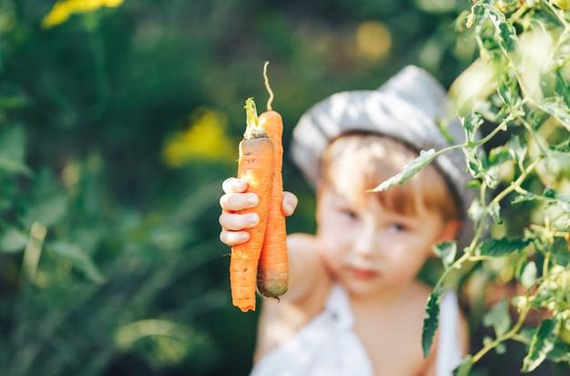 Netter junge im hut und in zufälliger kleidung, die um den tomaten-ang betrachtet kamera sitzen