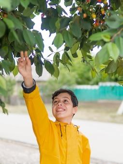 Netter junge im regenmantel und im kirschbaum