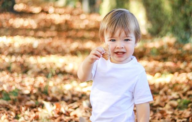Netter kleiner glücklicher junge, der gelbes blatt hält
