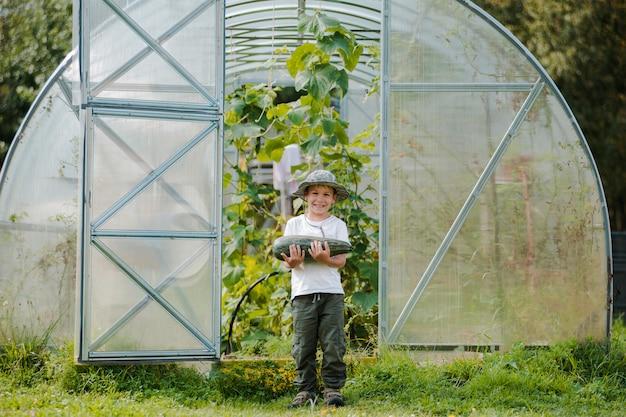 Netter kleiner junge, der einen haufen frisches bio-gemüse im heimischen garten hält.