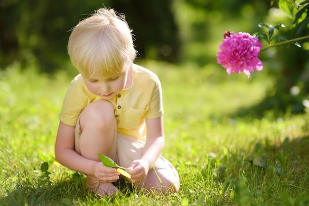 Netter kleiner junge, der mit blättern auf sonnigem grünem rasen nahe blumenbeeten mit pfingstrose spielt. landwirtschaft, gartenarbeit und kindheitskonzept.