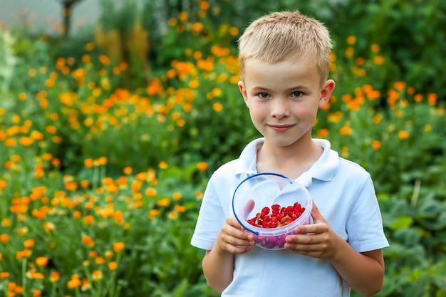 Netter kleiner junge, der schüssel mit erdbeeren hält