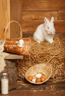 Netter osterhase sitzt mit korb der weißen eier, ländliche szene