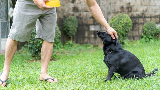 Netter schwarzer hund, der auf die fütterung vom mann wartet