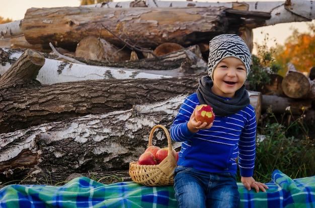 Netter stilvoller junge von zwei jahren in einem bunten hut und blauem pullover sitzt auf plaid auf baumstamm und isst einen saftigen krummen apfel aus einem gewebten holzkorb