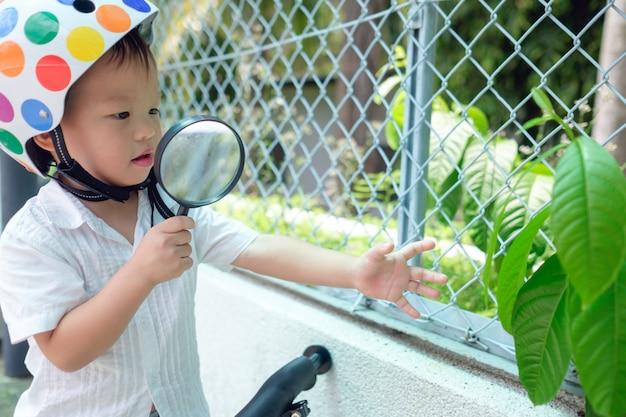 Nettes asiatisches 2 jahre altes kleinkindjungenkind mit fahrraderkundungsumgebung durch blick durch lupe an sonnigem tag, kleines kind streckt nach grüner pflanze aus, entdeckt natur mit kleinkindkonzept