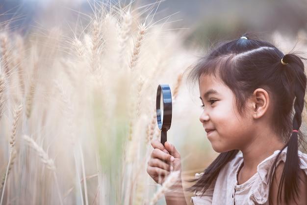 Nettes asiatisches kindermädchen, welches die ohren des weizens durch eine lupe auf dem gerstengebiet schaut