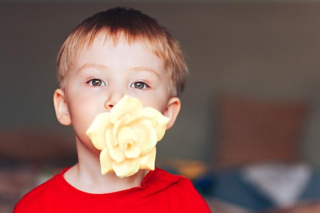 Nettes hübsches kleinkindkind des kleinen jungen steht mit einer gelben rose in seinem mund