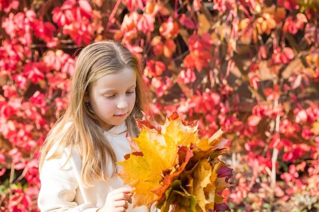 Nettes kind mit herbstlaub im beauty park. blondes langhaariges mädchen in einem beigefarbenen pullover in einem herbstpark mit einem strauß gelber blätter.