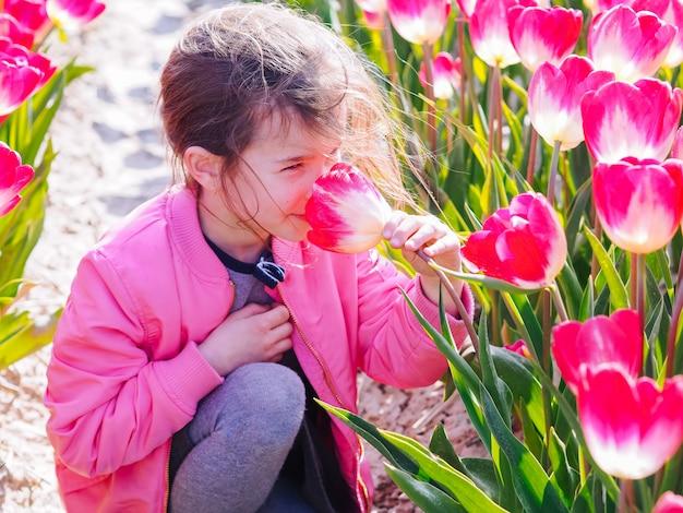 Nettes kindermädchen mit dem langen haar, das tulpenblume auf tulpenfeldern riecht