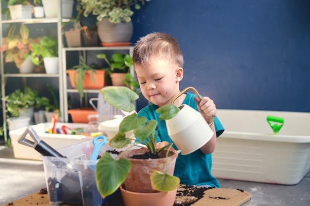 Nettes kleines asiatisches jungenkind, das pflanzen mit bewässerungsdose wässert, nachdem baum im pflanzentopf zu hause innengarten gepflanzt wurde