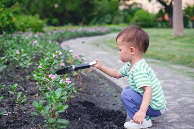 Nettes kleines asiatisches kleinkindjungenkind, das jungen baum auf schwarzem boden im grünen garten bei sonnenuntergang pflanzt