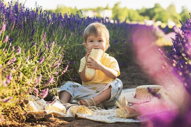 Nettes kleines baby, das auf einer decke mit essen für ein picknick in einem lavendelfeld sitzt