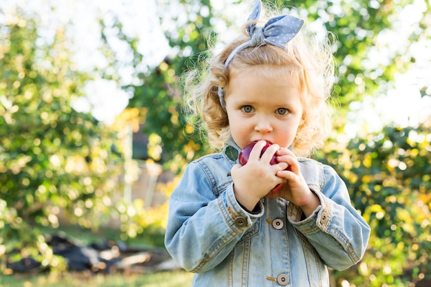 Nettes kleines mädchen, das im herbst reifen organischen roten apfel im apfelgarten isst. helles, lockiges europäisches mädchen in einem denim-anzug auf einem bauernhof. erntekonzept, apfelernte, ernte.