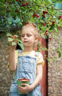 Nettes kleines mädchen pflückt eine kirsche von einem baum im kirschgarten