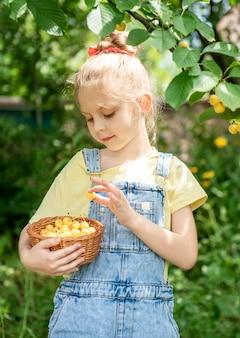 Nettes kleines mädchen pflückt eine süße kirsche von einem baum im kirschgarten
