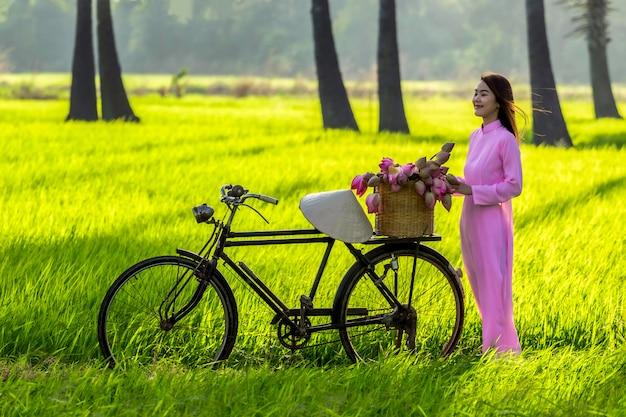 Nettes mädchen vietnam asiens, das ein ao-dai-trachtenkleiderrosa von vietnam trägt. asiatinnen vietnam ist mädchenlaufkatzenfahrrad zum speicher nach dem lotosblumenkorb am ländlichen reisfeld.