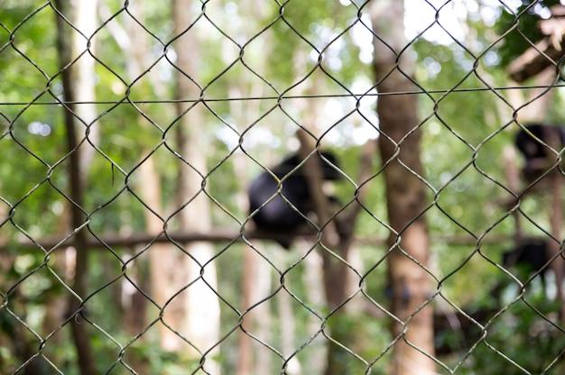 Netz oder käfig für in gefangenschaft gehaltene tiere.