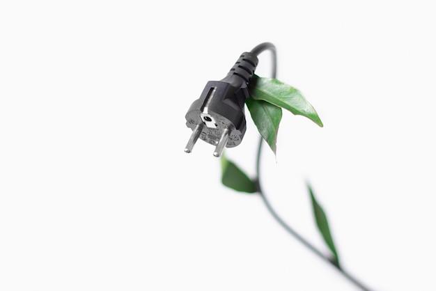 Netzstecker mit grünen blättern in steckdose vor einem weißen hintergrund mit kopierraum. konzeptfoto zur ökologie, umweltfreundlich.