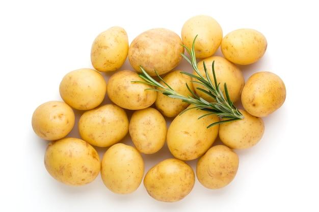 Neue kartoffel und rosmarin isoliert auf weiß.