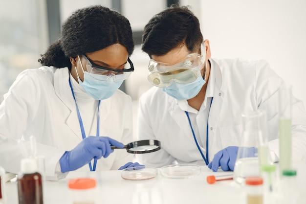 Neue prüfung. konzentrierte erfahrene forscher in uniform. test machen, impfstoff herstellen.