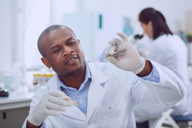 Neue wichtige tests. genialer professioneller biologe, der während der arbeit im labor einen test mit samen durchführt