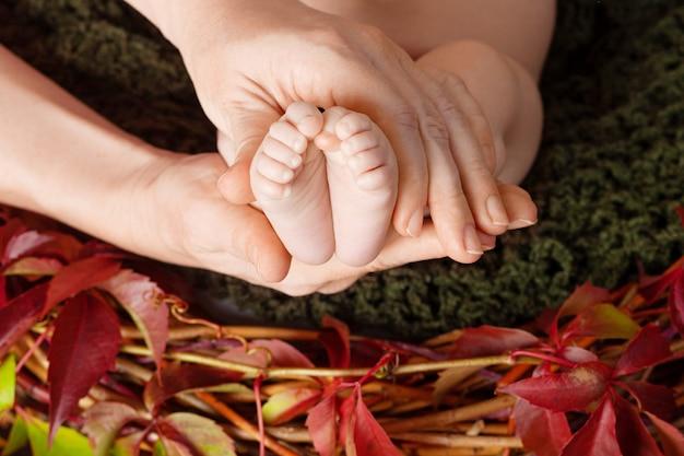 Neugeborene babyfüße in den mutterhänden. mutter macht massage für ihr kind. schließen sie herauf bild mit herbstdekor von ersttraubenblättern