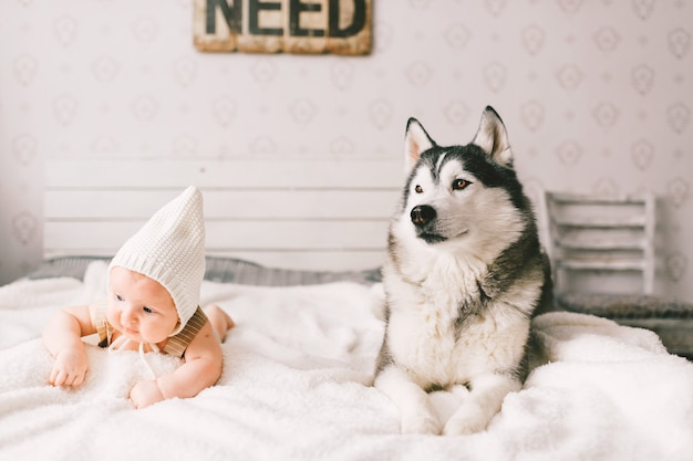 Neugeborenes babylebensstilporträt, das auf rücken zusammen mit huskywelpen auf bett zu hause liegt. kleines kind und schöne husky-hundefreundschaft. lustiges kind des entzückenden säuglings in der kappe, die mit haustier ruht.