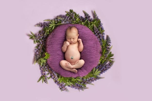 Neugeborenes mädchen auf einem rosa hintergrund mit lila blumen, kreis