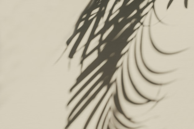 Neutrale blumenkomposition mit tropischer palmenzweig-silhouette auf pastell
