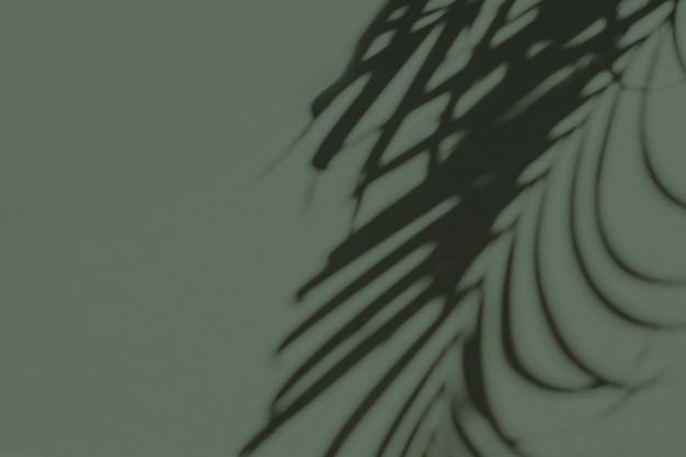 Neutrale blumenkomposition mit tropischer palmenzweig-silhouette auf pastellgrün