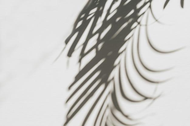 Neutrale blumenkomposition mit tropischer palmenzweig-silhouette