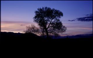 Nevada sonnenuntergang