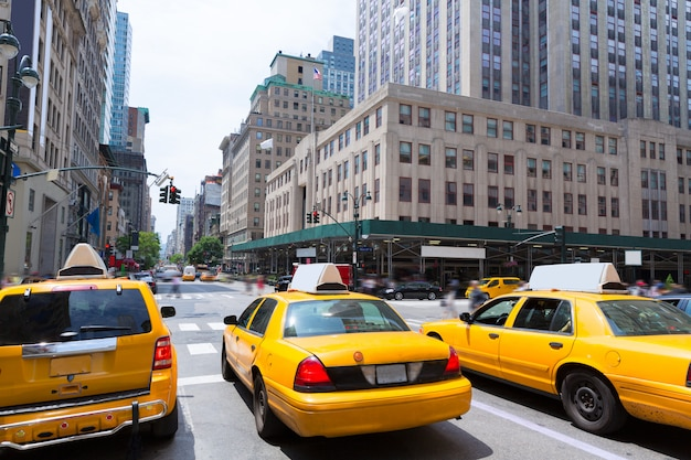 New york city manhattan fifth avenue 5. av us