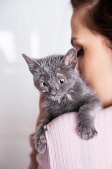 Nicht erkennbare frau, die eine straßenkatze streichelt, die aus einem tierheim gerettet wurde. lebensstil mit tieren zu hause.
