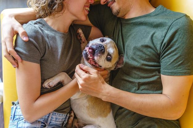 Nicht erkennbares paar, das sich zu hause mit hund küsst. horizontale draufsicht, die bulldoggenhaustier auf der couch streichelt.