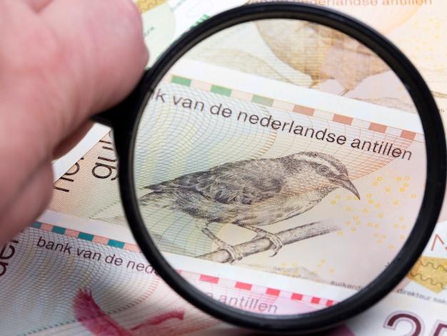 Niederländische antillen gulden in einer lupe