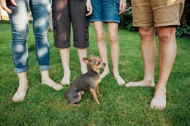 Niedriger abschnitt der familie mit ihrem haustier auf gras im park