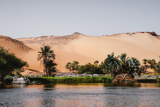 Nil-ufer